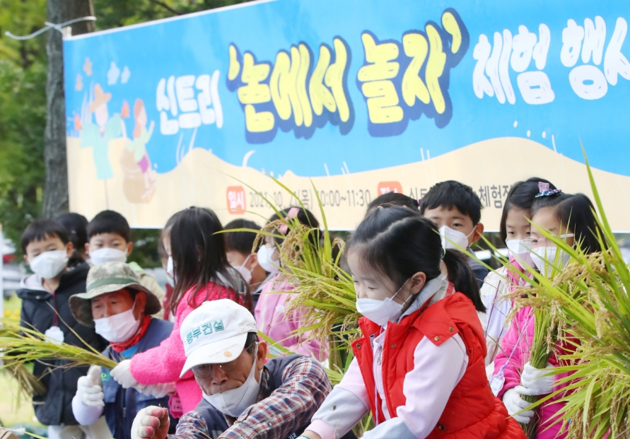 Rice Reaping Experience for Students
