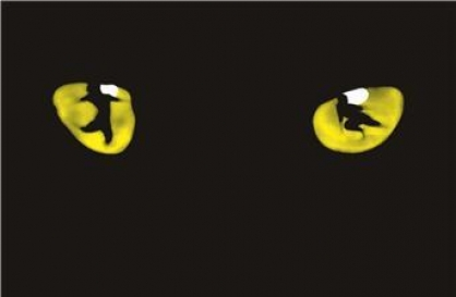 Int'l tour of 'Cats' to hit Seoul stage in September