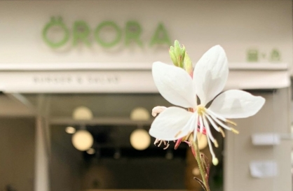 Protein-centric salads at Orora