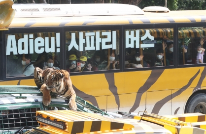 [Photo News] Farewell to Safari Bus, Hello to Wild Tram
