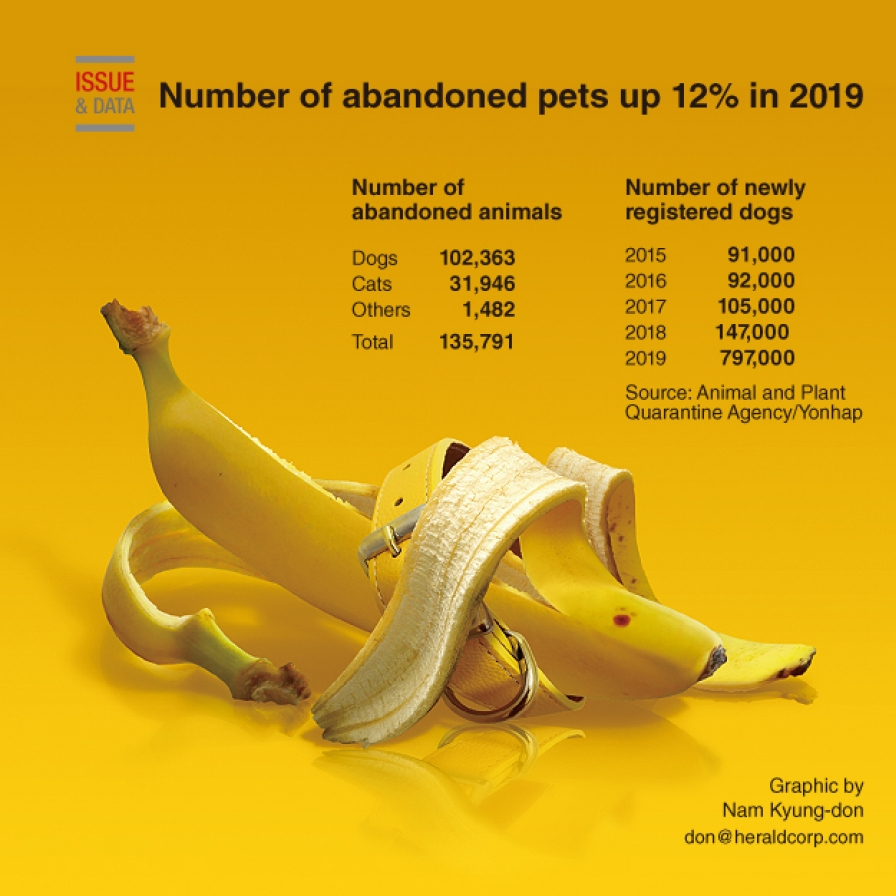 Number of abandoned pets up 12% in 2019