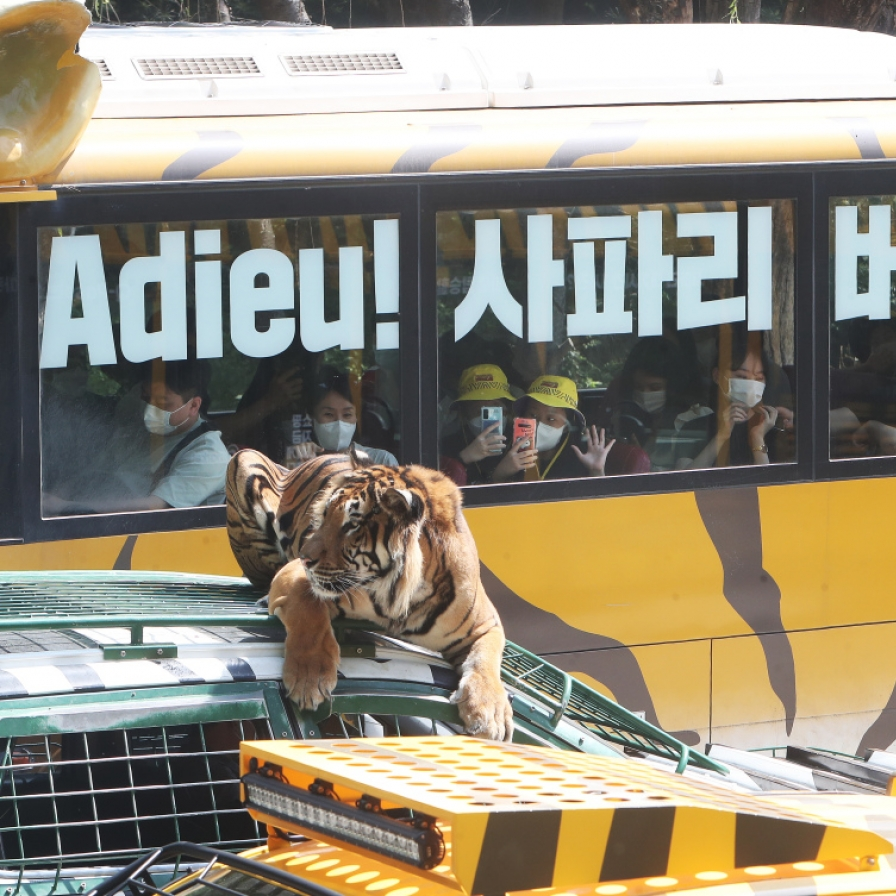 Farewell to Safari Bus, Hello to Wild Tram