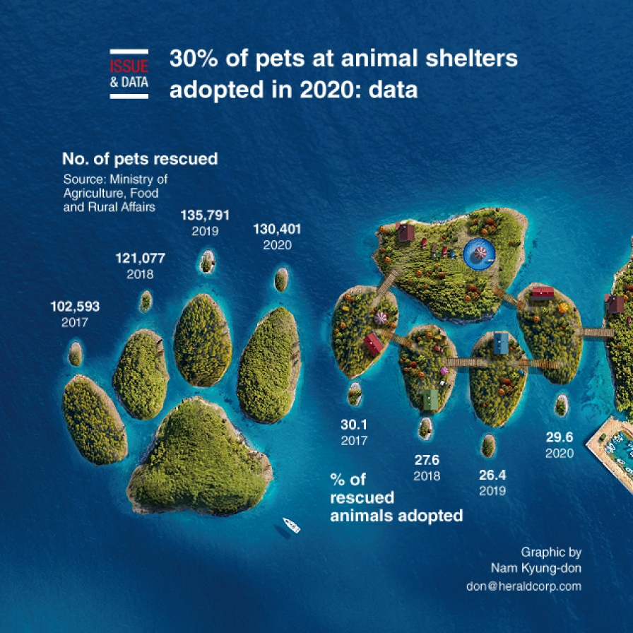 30% of pets at animal shelters adopted in 2020: data