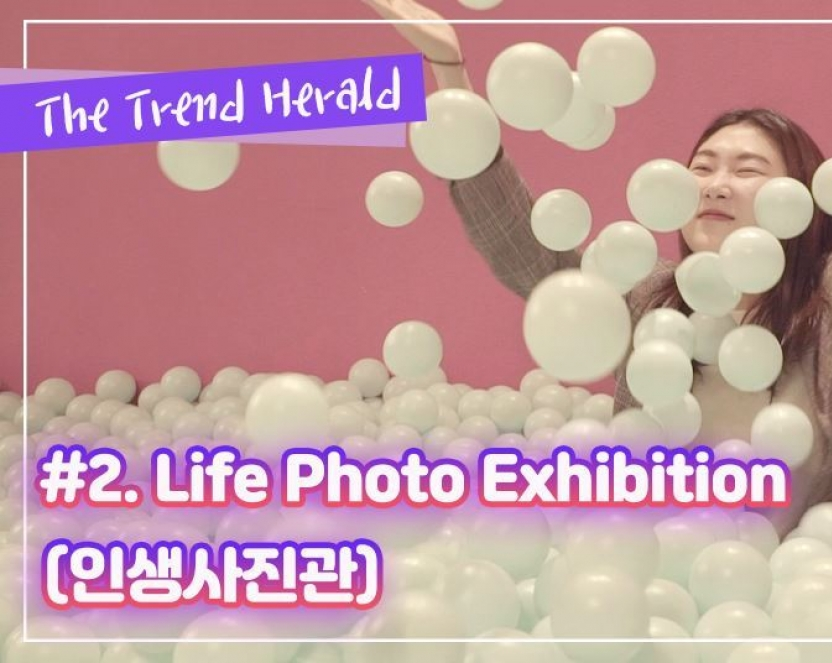 Exhibition offers unique joy of taking pictures