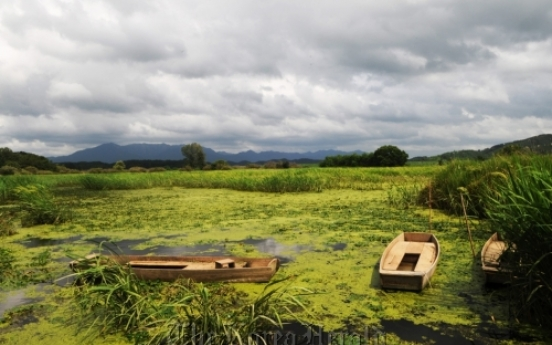National flower, Upo Wetland added to natural monuments list