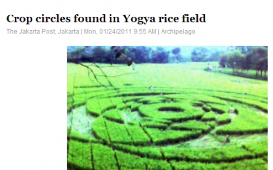 Crop circles found in Yogya rice field