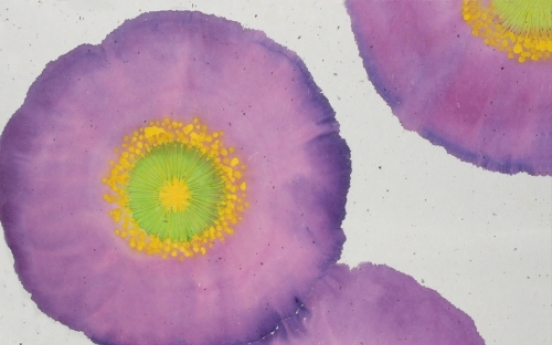 Intoxicating poppy flower paintings