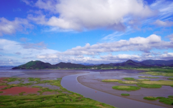 Suncheon Bay sings songs of nature