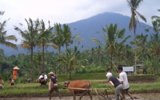 Eco Bali beyond the 'greenwash'