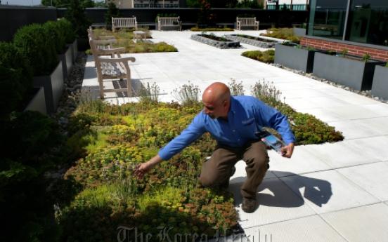 Rooftop garden soothes patients