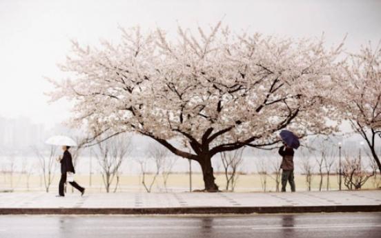 Exhibition shows Seoulites aren't always lonely
