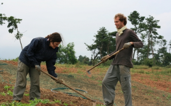 Sick of city life? Why not WWOOF?