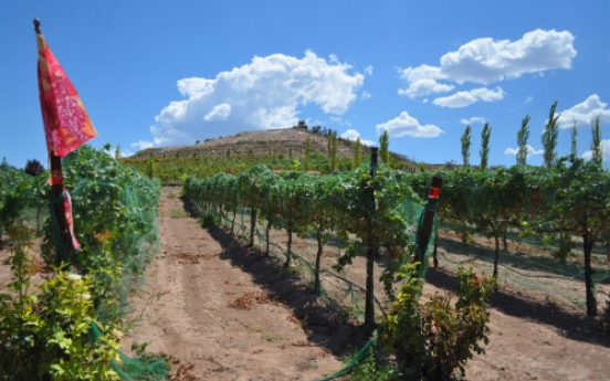 The next Napa? Arizona's Verde Valley angles to become a mecca for wine aficionados