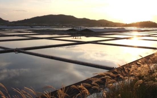 Korea's first 'Slow City' in limbo