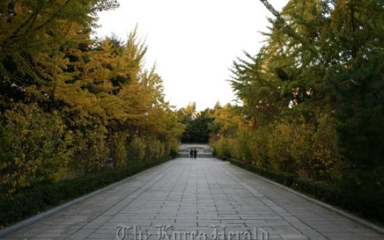 Escape to nature at Dosan Park