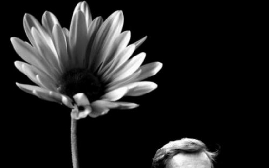 Vaclav Havel to be honored in Seoul