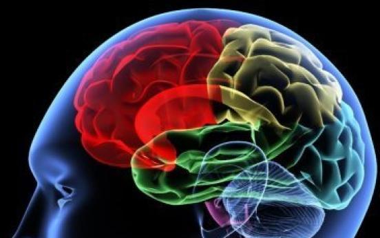 Brain size determine popularity: study