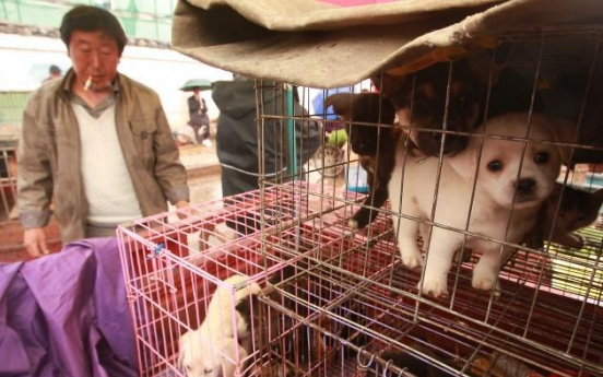 [Photo] Street animals of China