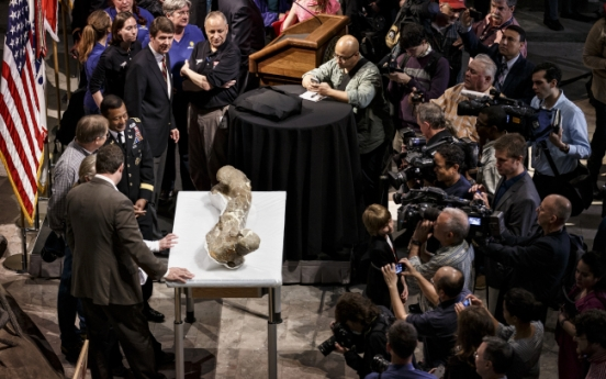 T. rex gets new home in Smithsonian dinosaur hall