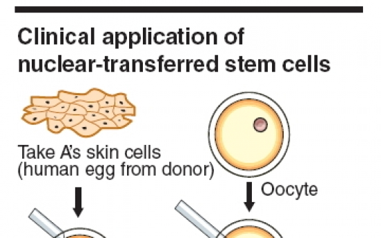 Stem cell research makes headway