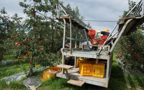 [Weekender] Early Chuseok advances harvesttime