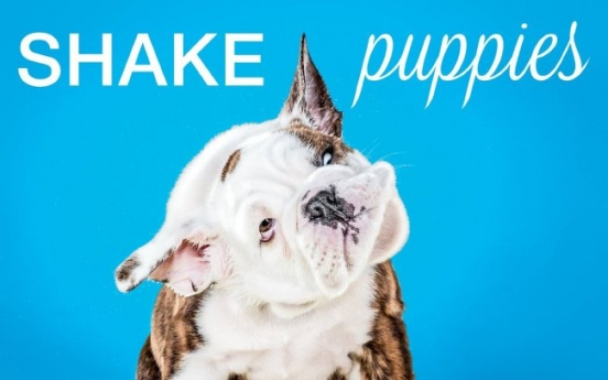 Puppies shake for memorable photos