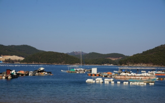 Changwon's spring about more than cherry blossoms