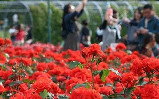 Largest rose festival to open in Ulsan