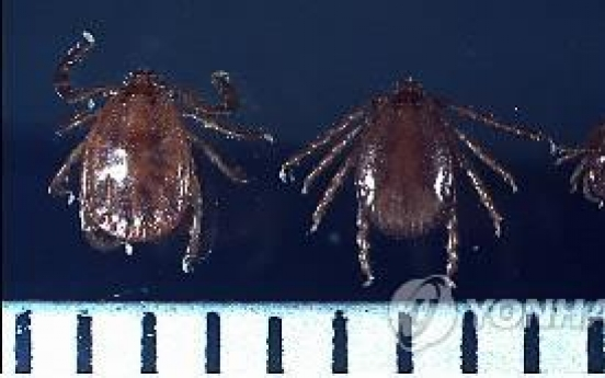 Authorities warn of rise in lethal mites