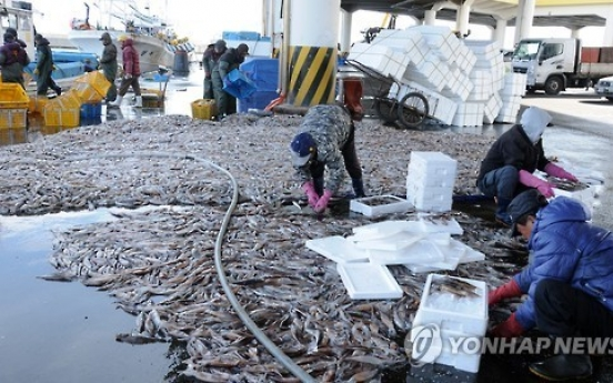 Chinese boats' overfishing dents squid haul in East Sea