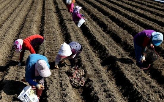 Korea's farmland area down 2.1% in 2016