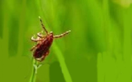 Nepalese worker in his 20s dies from tick-borne disease