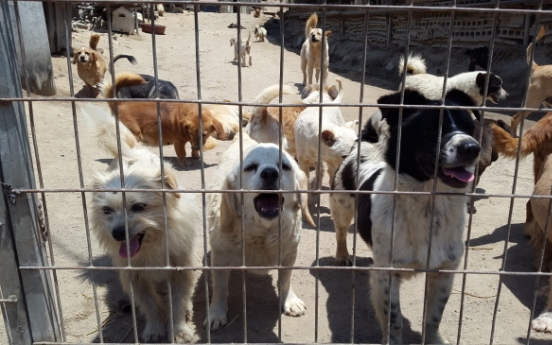 Over 55,000 pets dumped in 2017