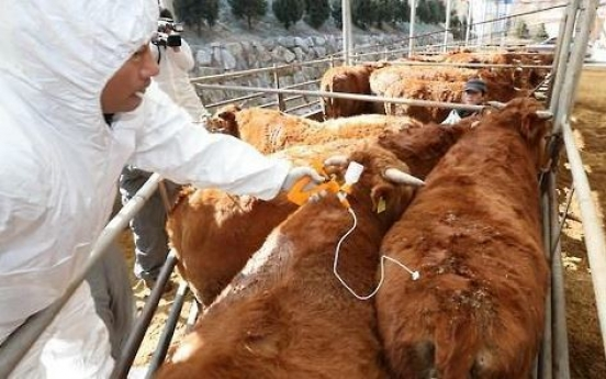 Korea's animal quarantine agency develops diagnosis kit for FMD