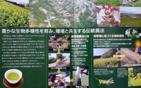 Korean scholar lays claim to Japan's globally recognized tea farming system