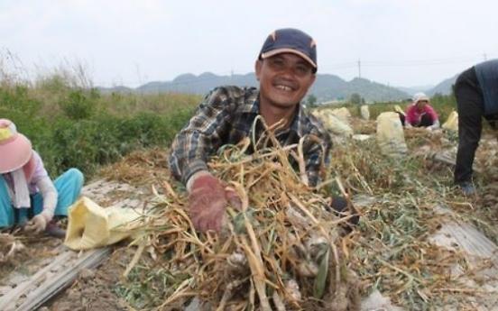 Korea's aging rural workforce increasingly reliant on migrant workers
