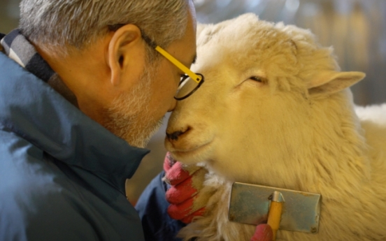 [Video] An afternoon in Seoul at a sheep cafe