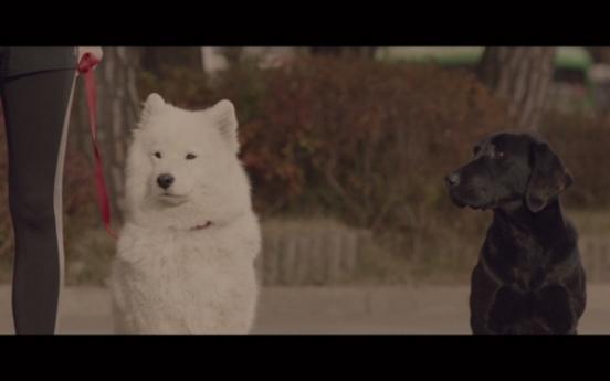 Innocean Worldwide starts 'black dog' campaign