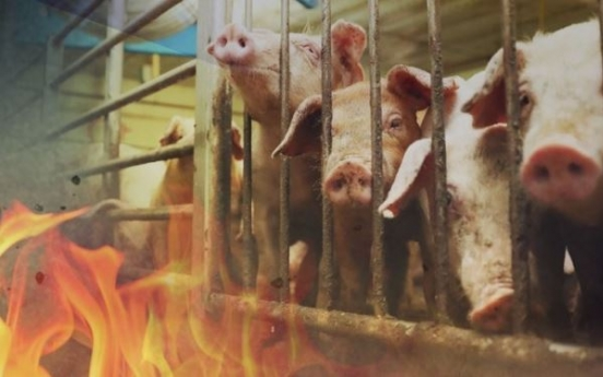 Paju farm fire causes death of 70 pigs