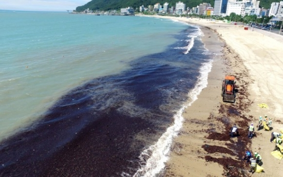 [Photo News] Korea begins big cleanup as Typhoon Prapiroon passes