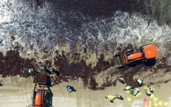[Photo News] Korea begins big cleanup as Typhoon Prapiroon passes