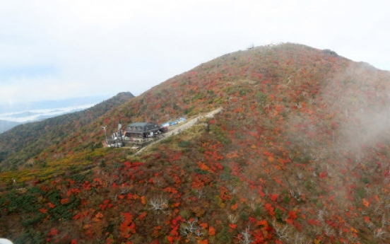 [Weather] Cool weekend forecast for Korea; first autumnal leaves seen at Seoraksan