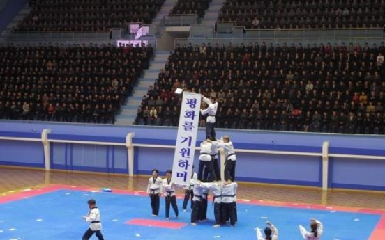 All-S. Korean taekwondo demonstration team performs in Pyongyang