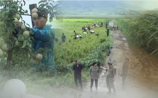 N. Korea's crop harvest up 2% on improved weather conditions