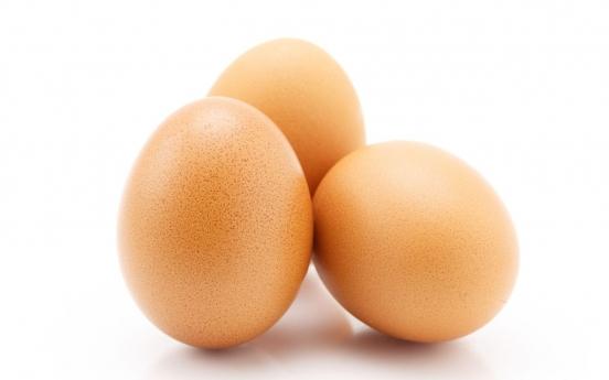 신선한 계란일까?…