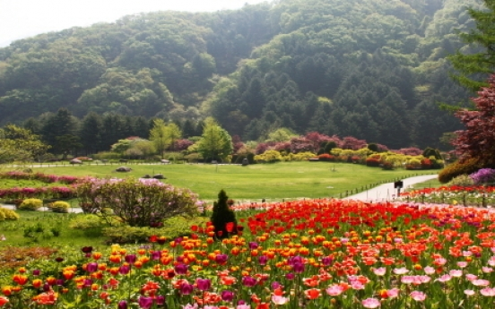 [Travel Bits] Festivals and sights across Korea