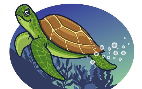 바다 거북이 플라스틱 쓰레기 먹는 까닭은 냄새 탓