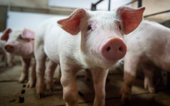 African swine fever in Korea seems to originate from Russia and China: report