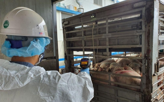 [Feature] Pig farmers cry for help from prolonged ASF outbreak