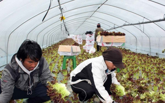 Pandemic hampers arrivals of migrant manual laborers: lawmaker